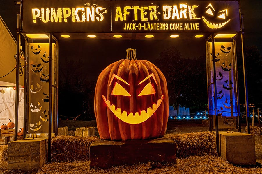 What to expect to expect visiting Pumpkins After Dark