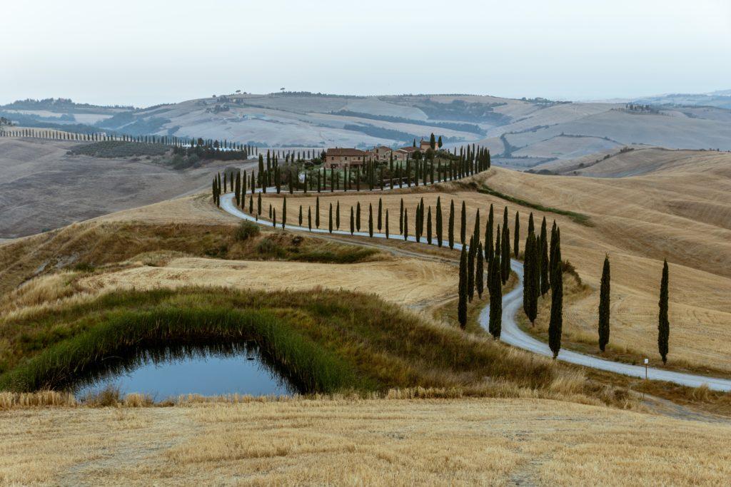 Row of cypress tress in Tuscany, Italy