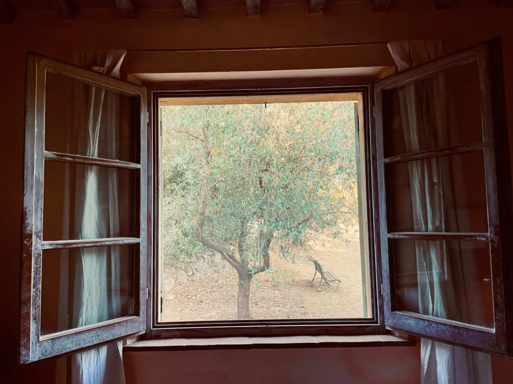 View of trees from a farmhouse window in Tuscany