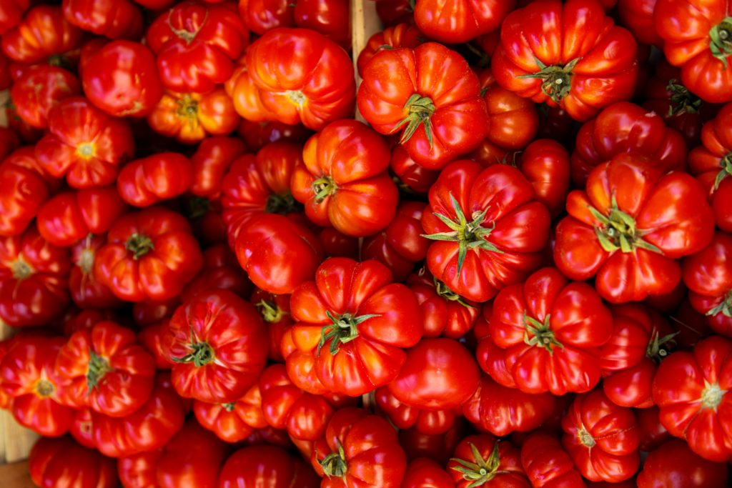 Red tomatoes in Tuscany, Italy